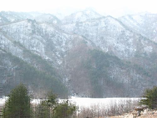 진전사터 계곡과 산