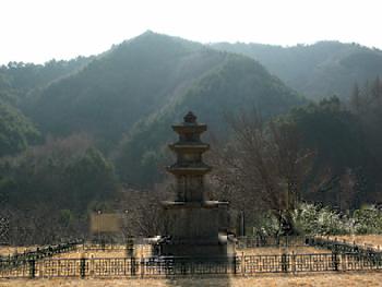 진전사터 삼층석탑